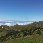 Anfahrt zum Pico do Areeiro