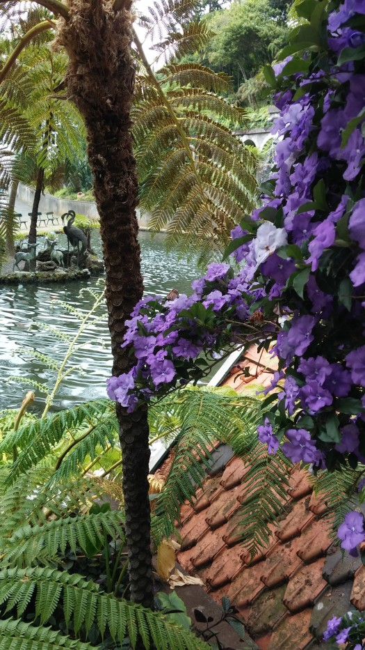 Botanischer Garten (13)
