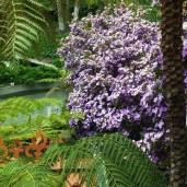 Botanischer Garten (14)