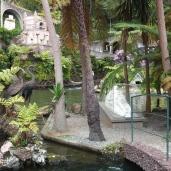Botanischer Garten (17)