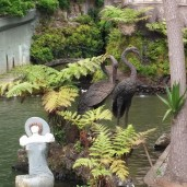 Botanischer Garten (18)