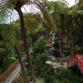 Botanischer Garten (19)