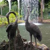 Botanischer Garten (22)
