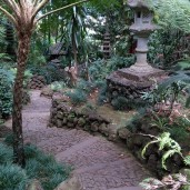 Botanischer Garten (4)