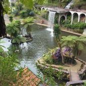 Botanischer Garten (6)