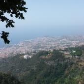 Funchal - Blick von Monte