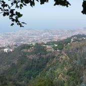 Funchal (Blick von Monte)