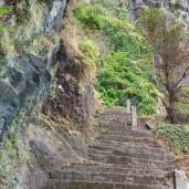 Madeira - An der alten Küstenstraße
