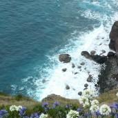 Madeira - Entlang der alten Küstenstraße