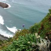 Madeira - Fahrt auf der alten Küstenstraße