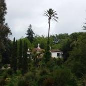 Palheiro Gardens - Herrenhaus der Fam. Blandy (2)