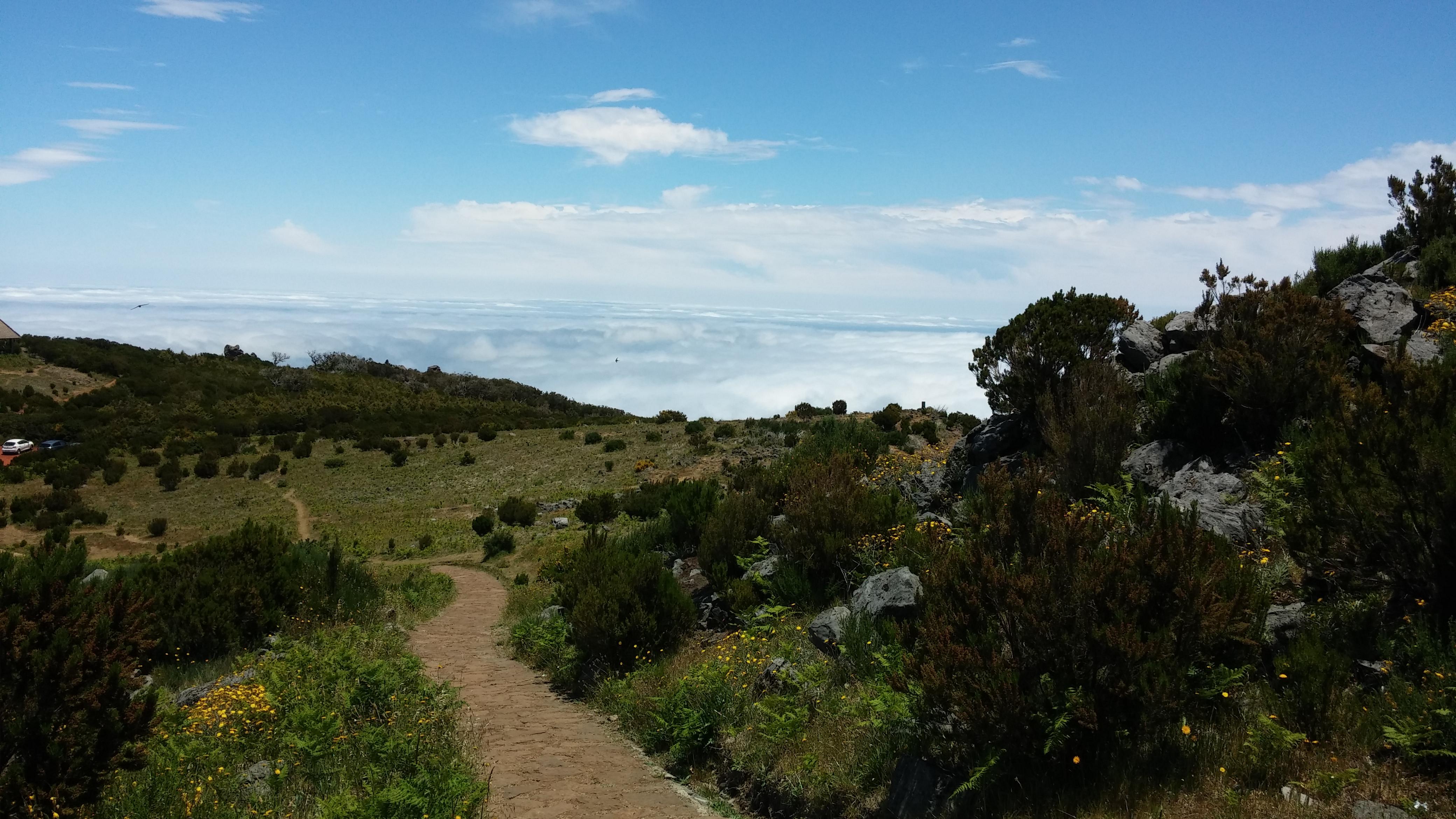 Pico Ruivo (3)