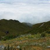 Pico Ruivo (4)