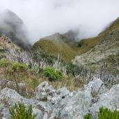 Pico Ruivo (5)