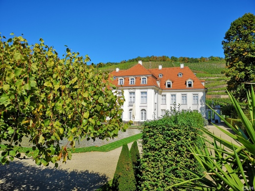 Schloß Wackerbarth in Radebeul